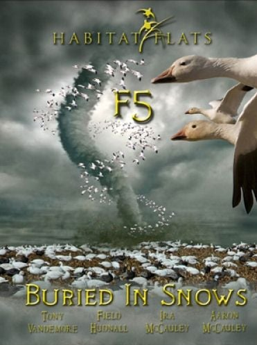 Image of F5: Buried in Snows DVD