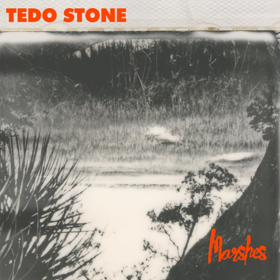 Image of Tedo Stone - Marshes {Compact Disc}