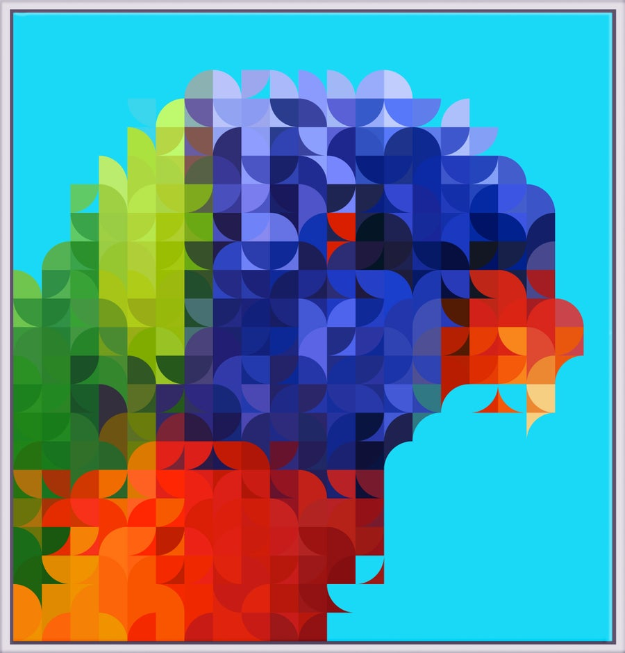 Image of Squint Abstract Print Rosella