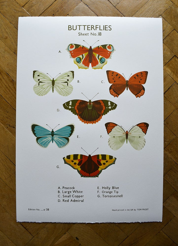Image of Butterfly School Chart
