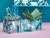 Image of 'Grid' Plant Frames Multi- Teal / Pink / Grey