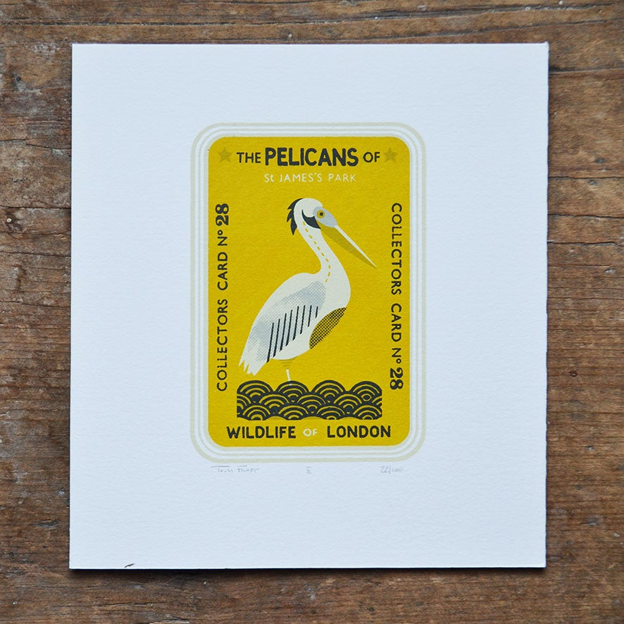 Image of Pelican Collectors Card