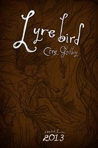 Image of Lyrebird