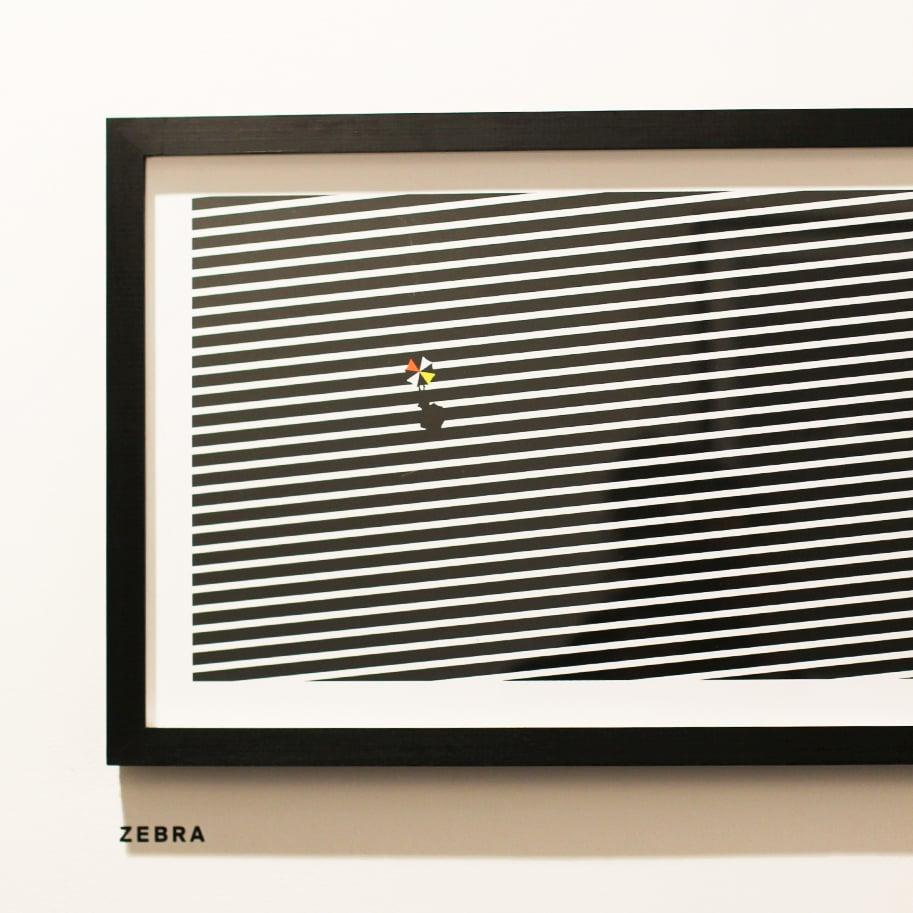 Hide and seek Zebra