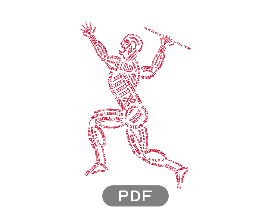 Image of Muscular Typogram - PDF