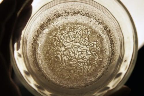 Image of TONGKAT ALI spagyric tincture - alchemically enhanced plant extraction