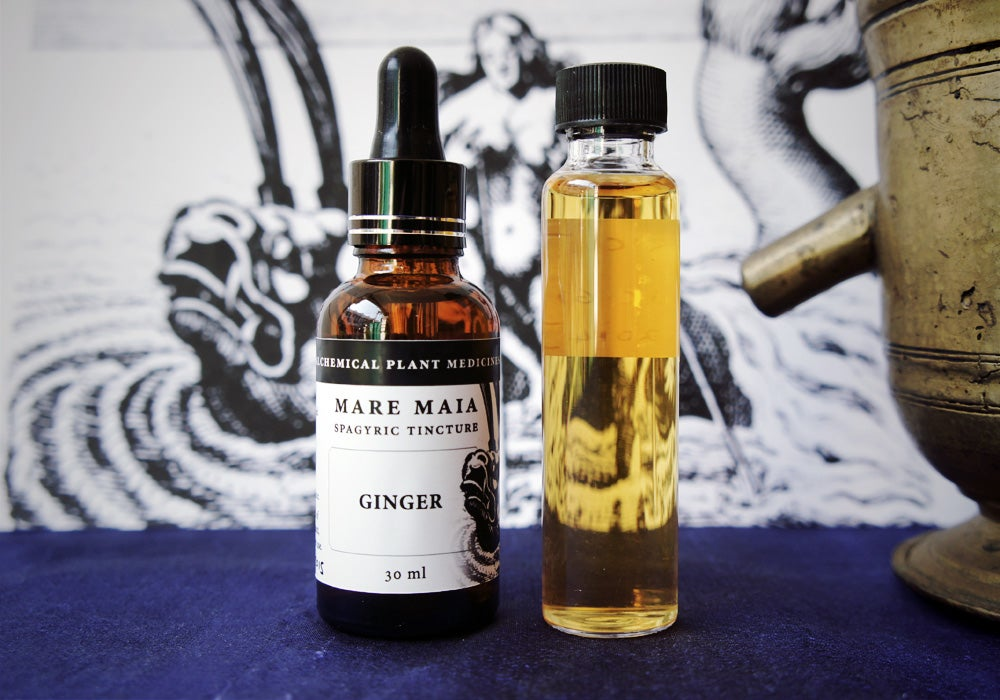 Image of GINGER spagyric tincture - alchemically enhanced plant extraction