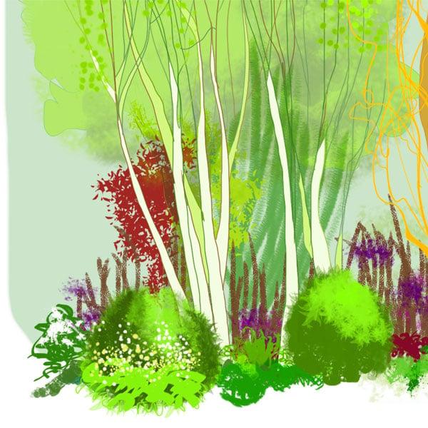 Image of Rain Garden