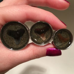 "Image of Shark Teeth Plugs (sizes 3/4-2"")"