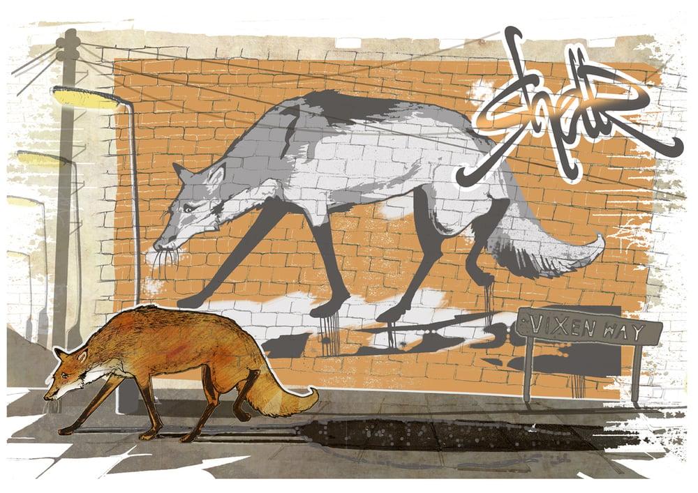 Image of Urban Fox