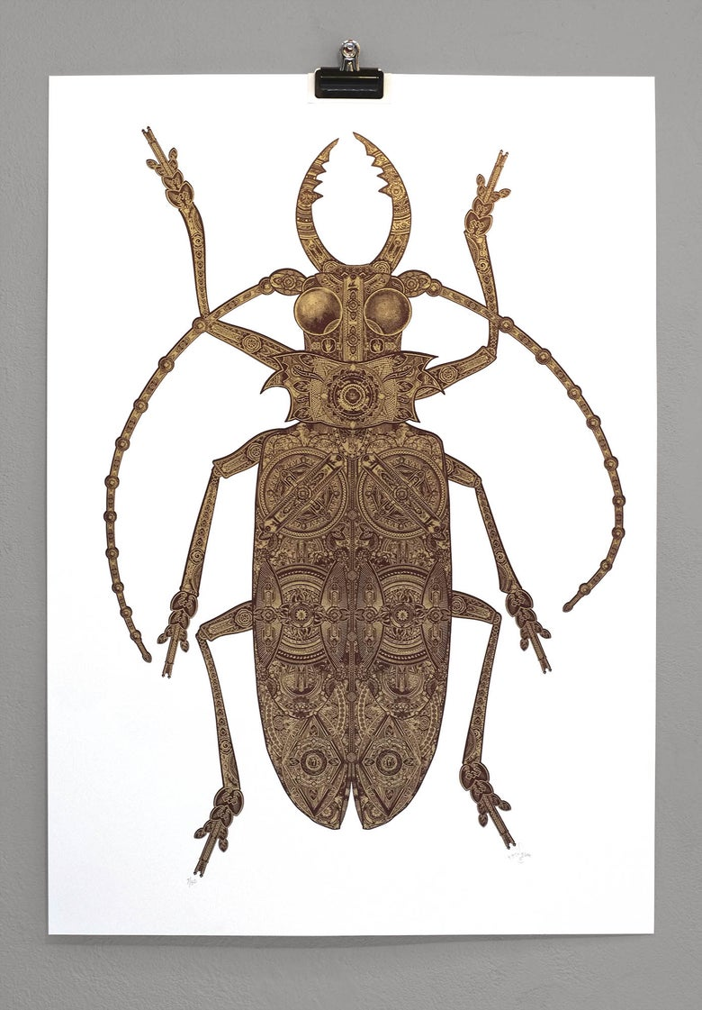 Image of The Golden Beetle