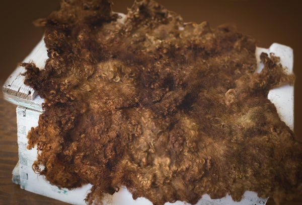 Image of Nest of Curls Blanket - Chocolate Dream