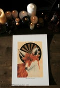 Image of Fox: Third Eye (Vulpes vulpes; Tertius oculus) A3 fine art print
