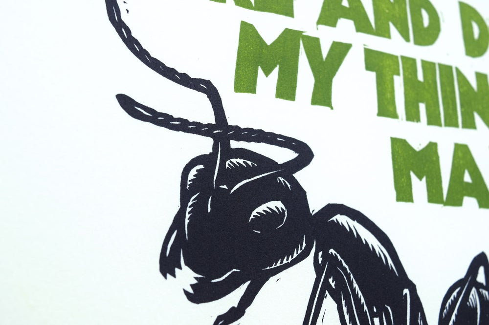 Good Luck, Little Ant!