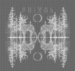 Image of Animal Prisms Extended cd