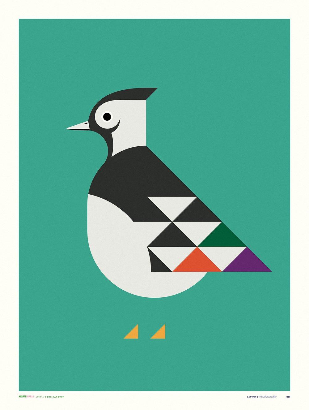 Image of Lapwing / Cork Harbour Bird Series