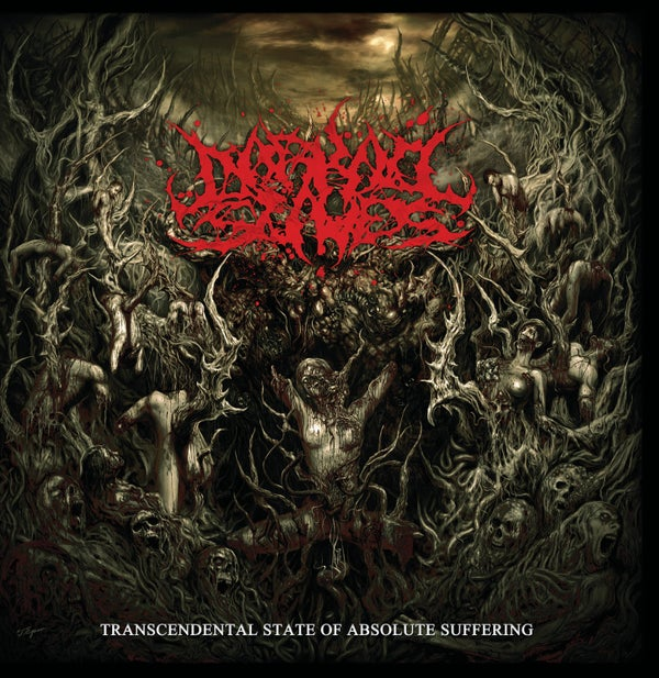 Image of Darkall Slaves - Transcentental State Of Absolute Suffering