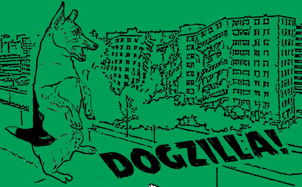 Image of Dogzilla