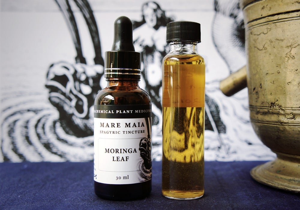 Image of MORINGA LEAF spagyric tincture - alchemically enhanced plant extraction