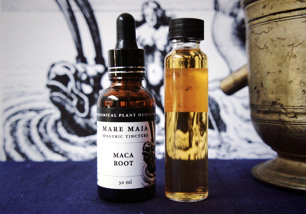 Image of MACA ROOT spagyric tincture - alchemically enhanced plant extraction