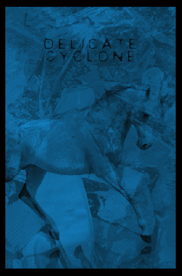 Image of DELICATE CYCLONE Limited Edition Screen Printed Poster + Digital Album