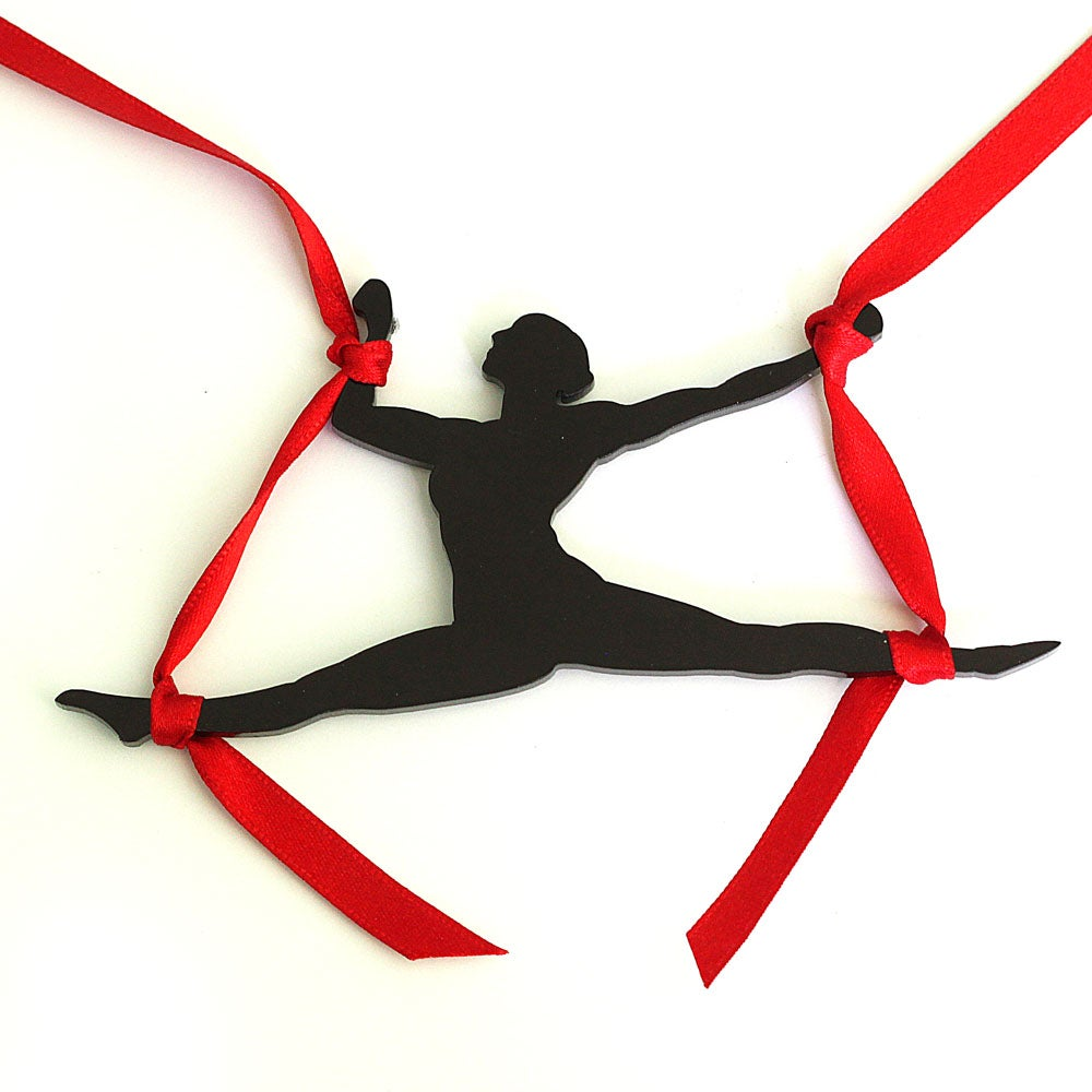 Image of Aerial Silks Necklace