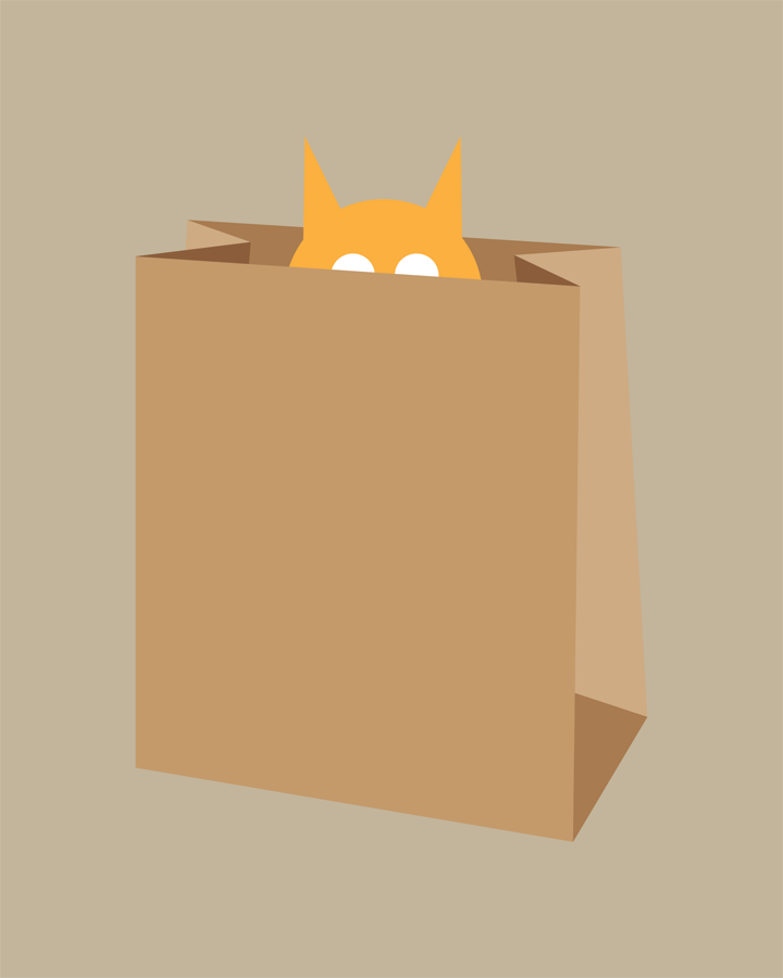 Cat in Bag Collection