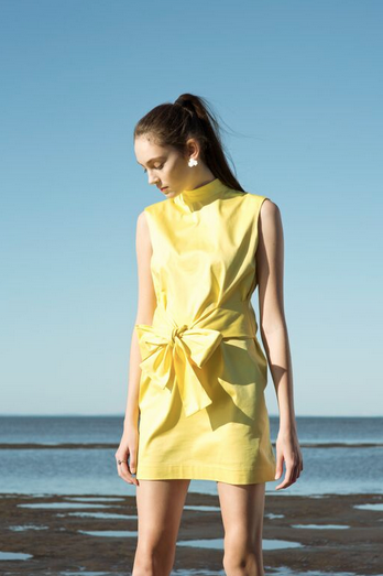 Image of PRIMROSE DRESS