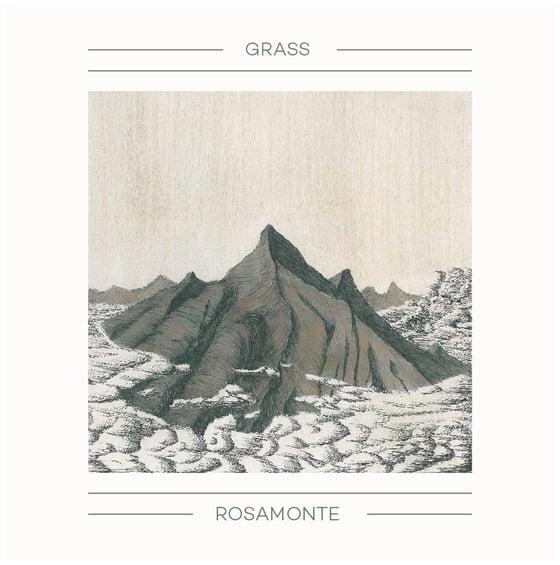 Image of Rosamonte LP