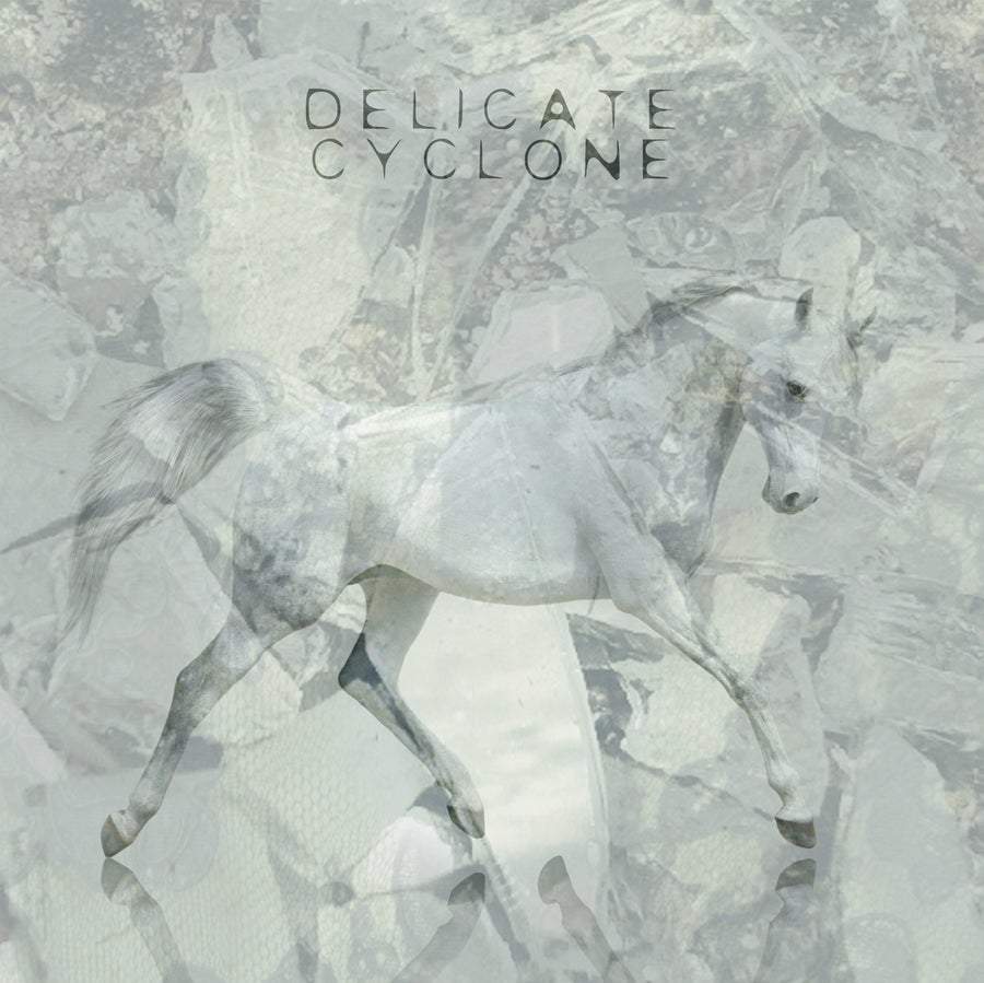 Image of DELICATE CYCLONE Compact Disc (CD) + Digital Album