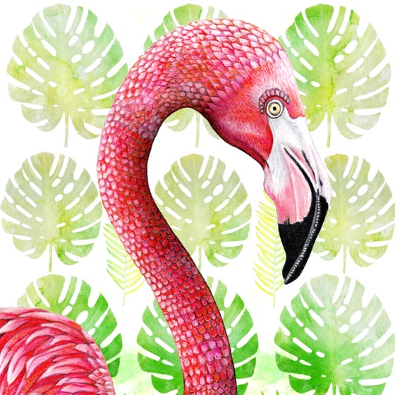 Image of Flamingo Tropico - Giclée art print on HAHNEMUHLE photo rag paper