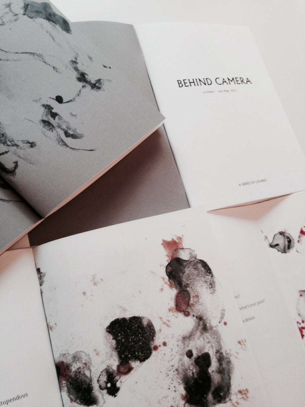 Image of 1st Edition - 'Behind Camera' by Gary Myles