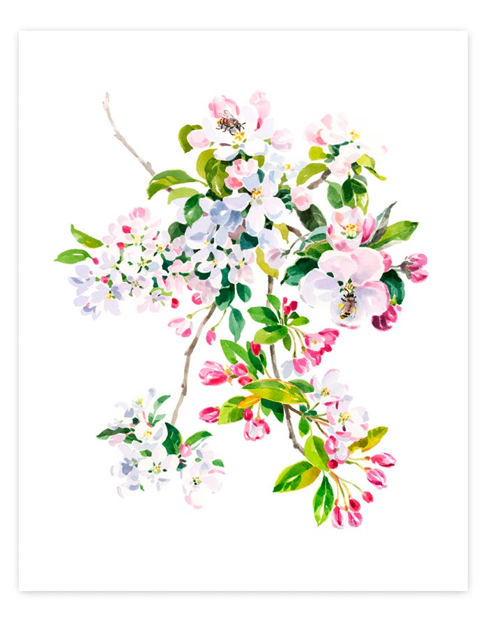 Image of Wild Apple & Honey Bee Giclée Art Print #1