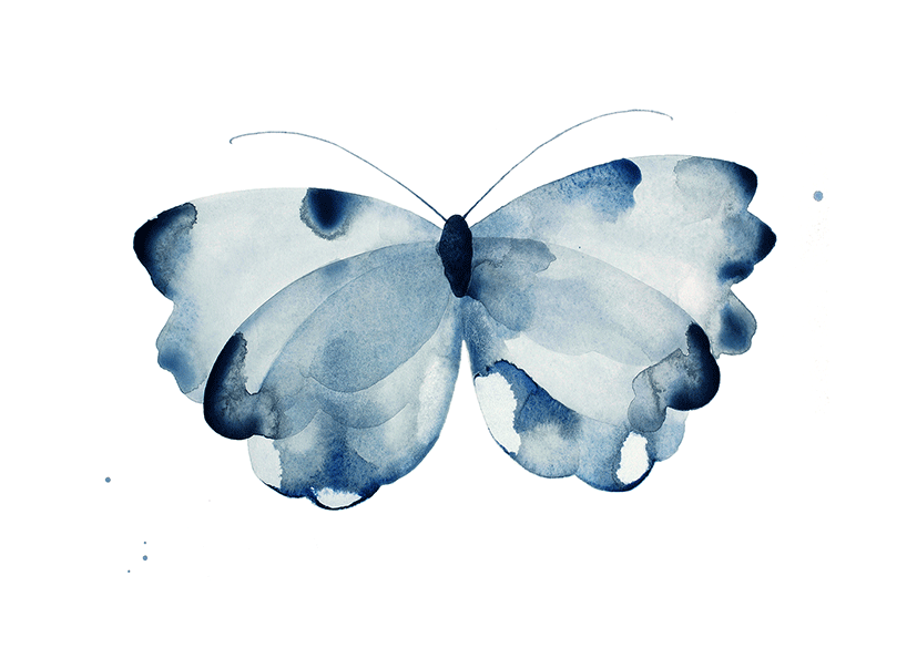 Image of Butterfly Dark Blue