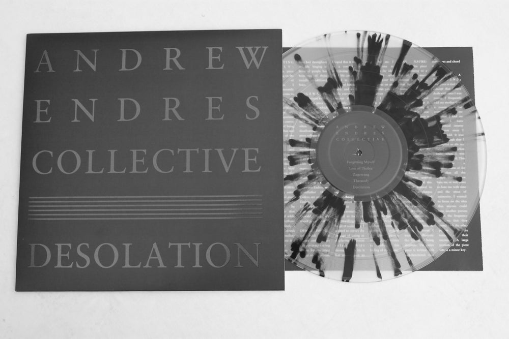 "Image of DESOLATION 12"" VINYL"