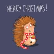 Image of Hedgehog Christmas card (single card)