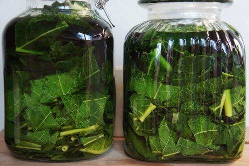 Image of PAPAYA LEAF spagyric tincture - alchemically enhanced plant extraction