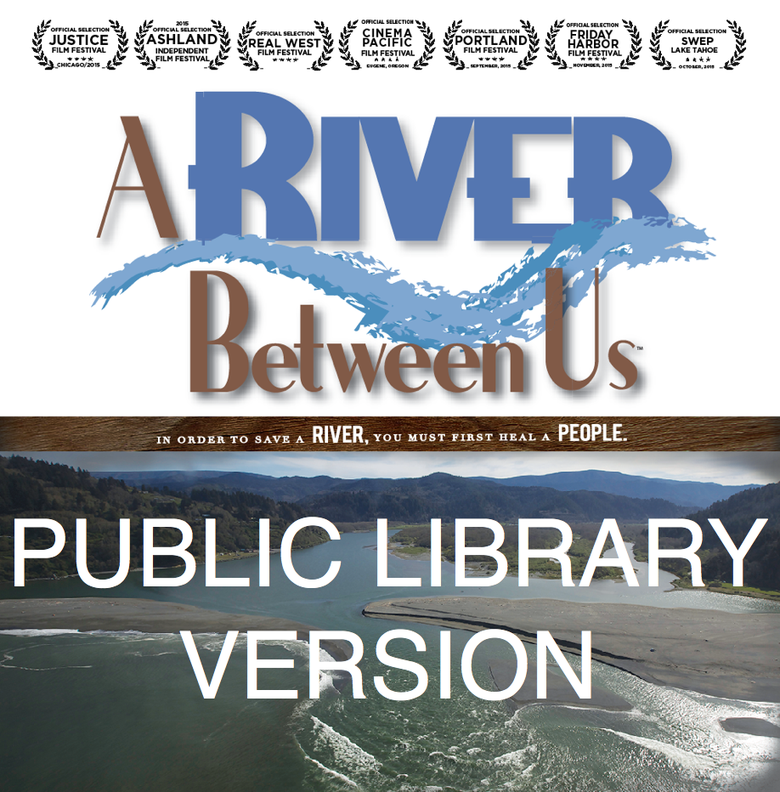 Image of Public Library DVD - A River Between Us