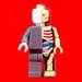 Image of Jason freeny Micro Anatomic