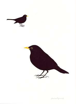 Image of Blackbird no1