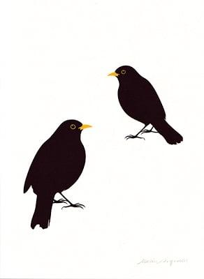 Image of Blackbird no2