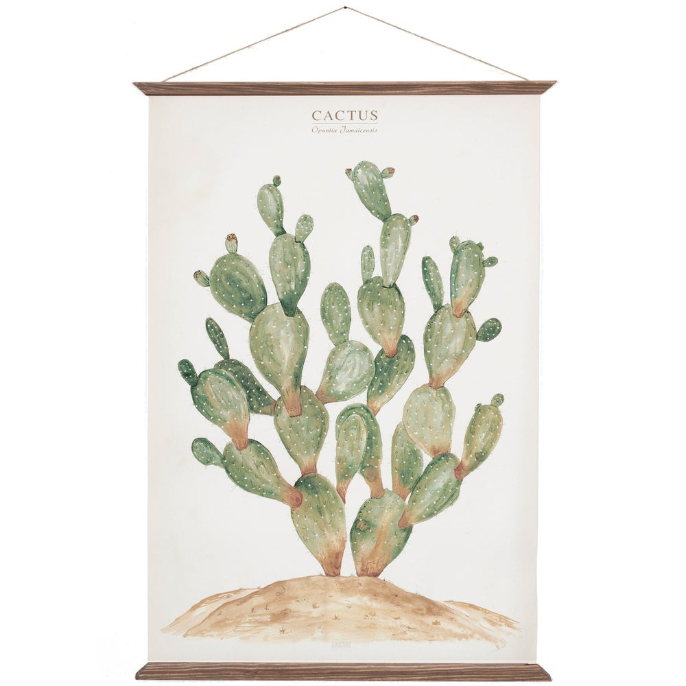 Image of Cactus Canvas Poster - Opuntia