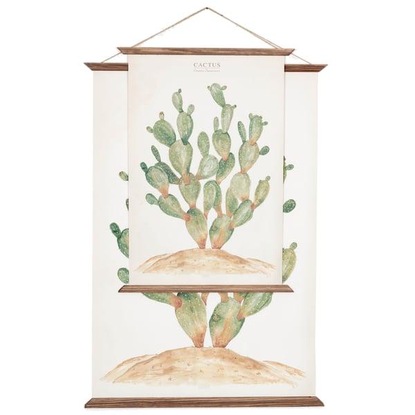cactus - Opuntia - arminho