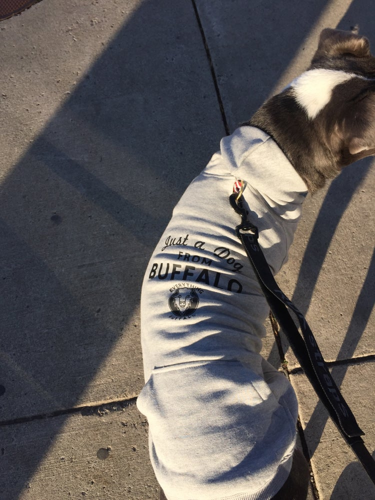 Image of Just a Dog from Buffalo EB- Doggie Hoodie