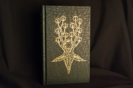 Image of The Devil's Dozen (Special Edition) by Gemma Gary
