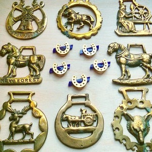 Image of Lucky Horseshoe Brooch