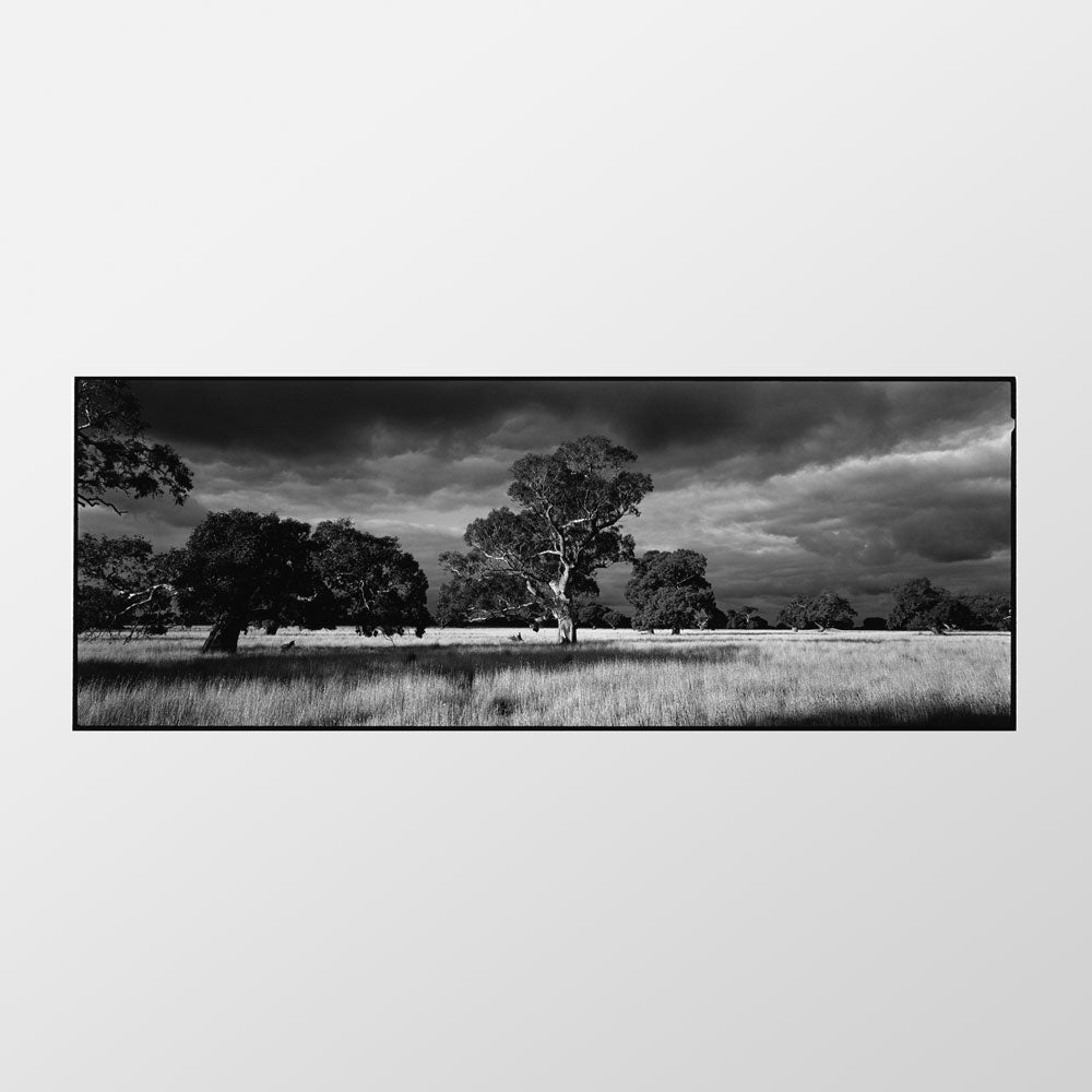Image of Late summer evening, Dunkeld, 2004 – Limited edition of 100