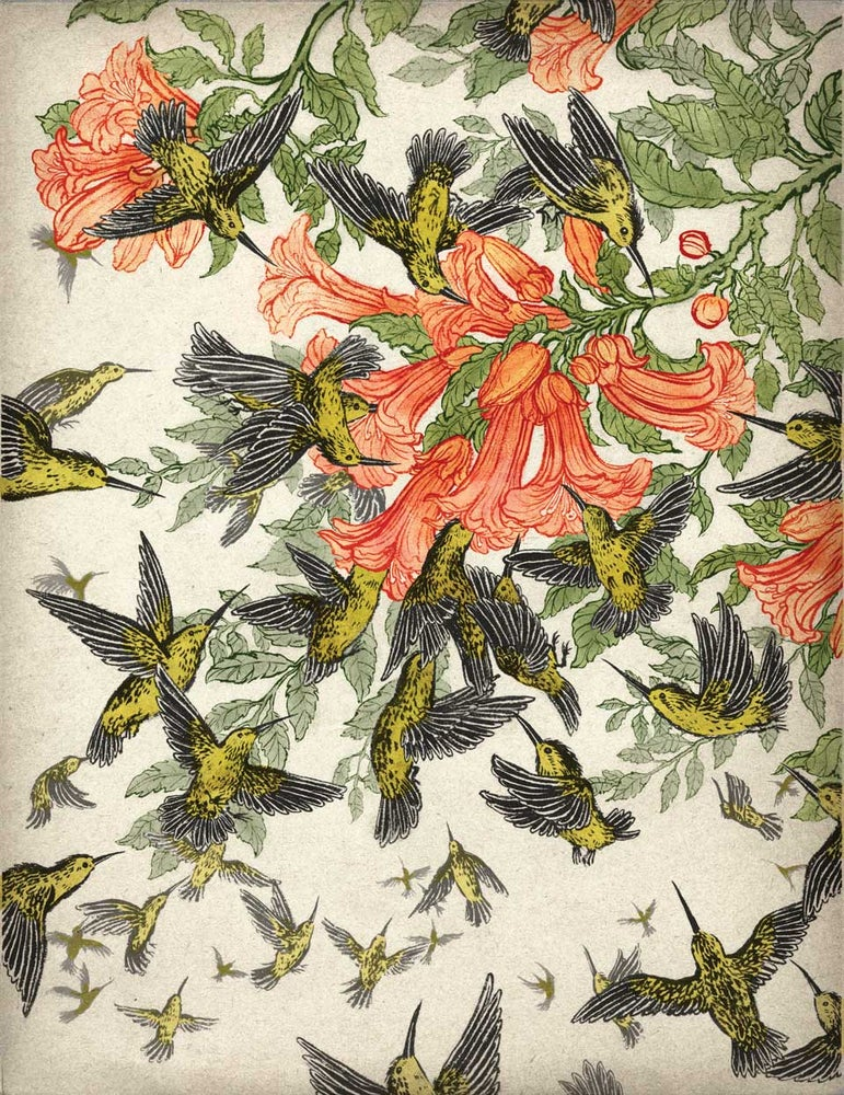 Image of popular print 4: hummingbirds
