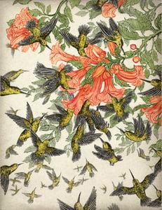 Image of popular print 4: hummingbirds