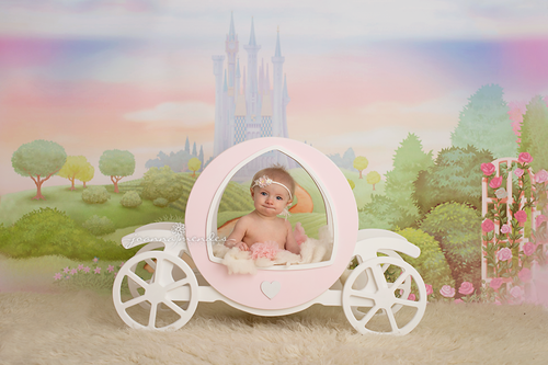 Image of Wooden Princess Carriage Newborn Baby Toddler photography prop
